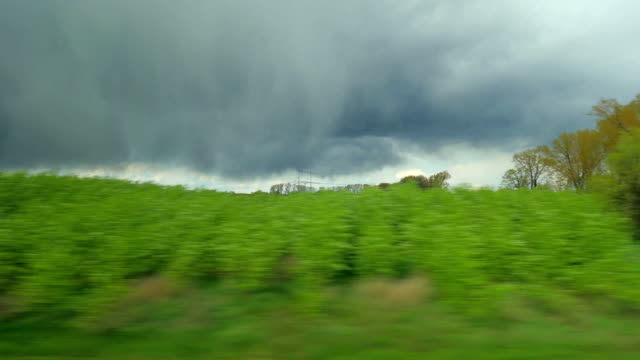 View from train to nature landscapes and heavy clouds video