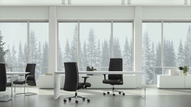 vídeos de stock e filmes b-roll de view from window in business office on winter snowfall on background coniferous trees and cloudy sky. background plate, chroma key video background. - office background