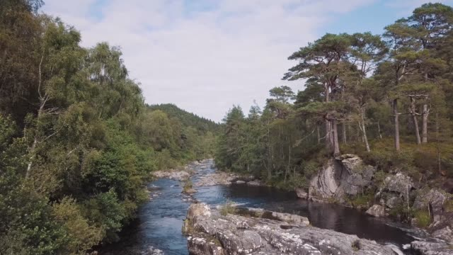 view of a river strewn with rocks and surrounded by a forest trees. aerial drone footage showing a magic scotland landscape - highlands scozzesi video stock e b–roll