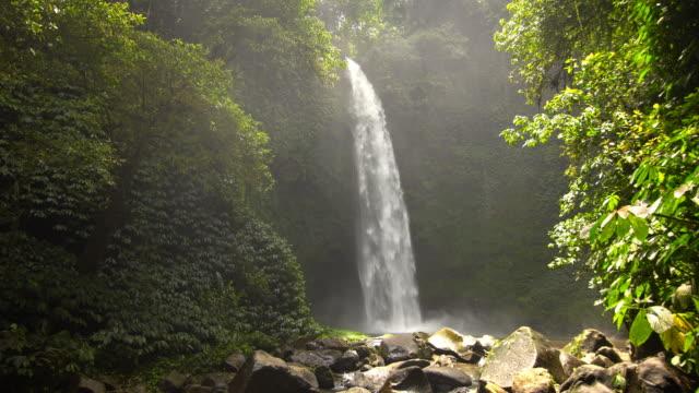 Blick auf einen Wasserfall mitten in einem tropischen Regenwald – Video