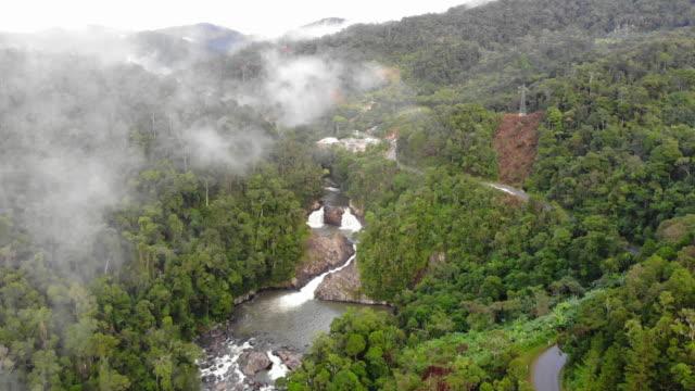 utsikt över ovanför vattenfallet i djupa skogen - madagaskar bildbanksvideor och videomaterial från bakom kulisserna