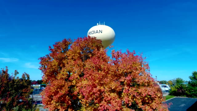 View of an autumn colored tree with a water tower behind video