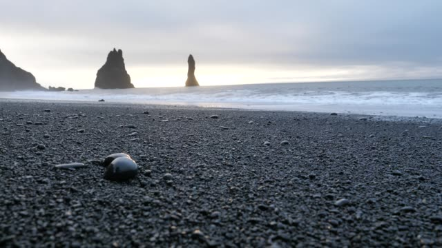 View of an Iceland Beach with black sand video