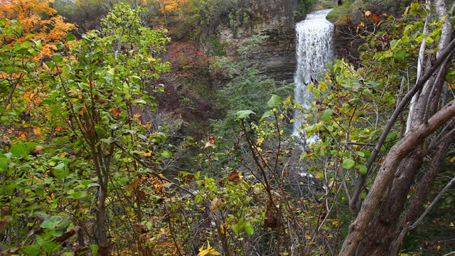 View of Borers Falls in Ontario, Canada video
