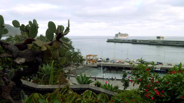 View of cruise ship departuring from port of Funshal video