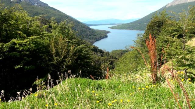 View of Escondido Lake (Tierra del Fuego Lake) video