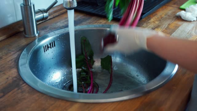 blick auf weibliche hände in handschuhen waschen die rote bete in derenke. - chenopodiacea stock-videos und b-roll-filmmaterial