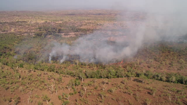 vidéos et rushes de aerial ws view of  fire in forest / mitchell plateau, western australia, australia - desastre natural