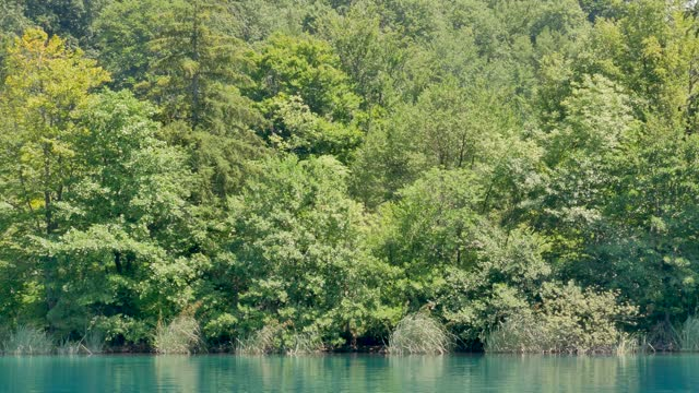 view of lake Kozjak from the electric ferry at Plitvice lakes video
