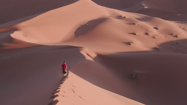 4K view of male tourist walking away from camera on the edge of a sand dune inside the Namib-Naukluft National Park video