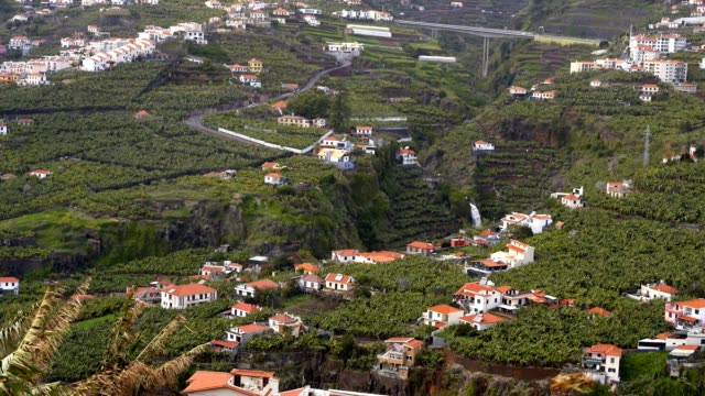 View of Miradouro da Torre viewpoint of villages in Madeira View of Miradouro da Torre viewpoint of villages in Madeira funchal stock videos & royalty-free footage