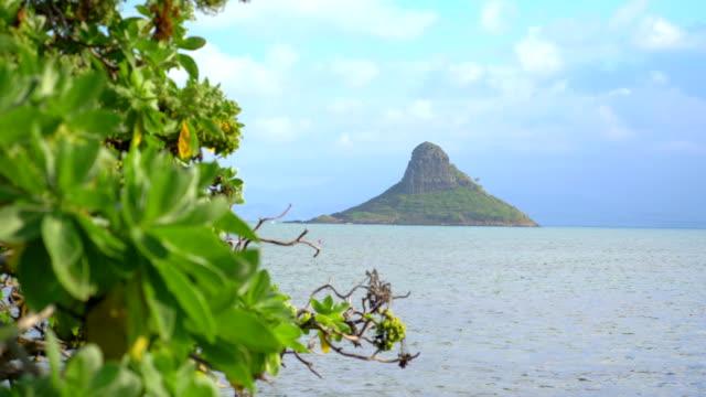 4 k スローモーションで観チャイナマンズ ・ ハット島ハワイ - 人里離れた点の映像素材/bロール