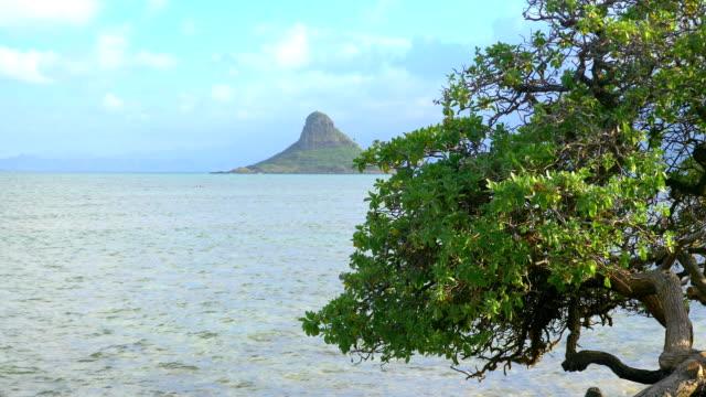 チャイナマンズ ・ ハット島 4 k スローモーションでハワイ ・ オアフ島のビュー - 人里離れた点の映像素材/bロール