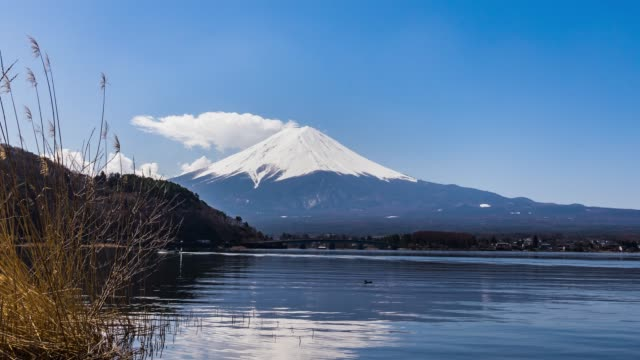 View of Mount Fuji at kawaguchiko, Japan in the sunny day video