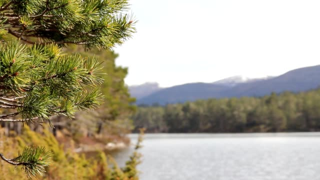 View of mountains and lake video