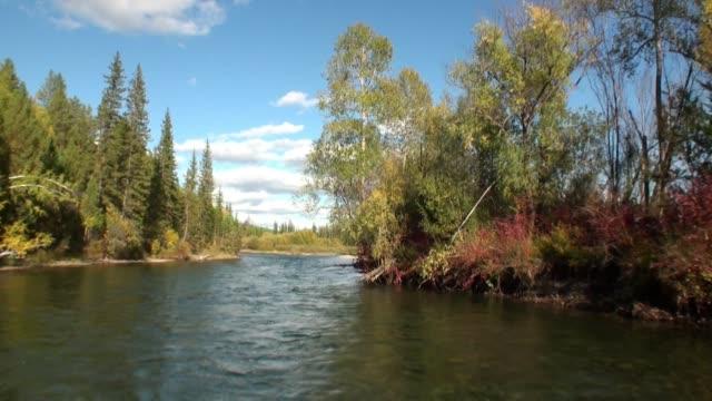 stockvideo's en b-roll-footage met uitzicht op het natuurlijke landschap van de rivier de lena van bewegende motorboot in siberië. - duurzaam toerisme
