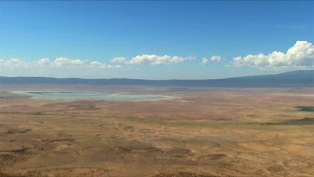 blick auf ngorongorokrater – tansania - afrikanische steppe dürre stock-videos und b-roll-filmmaterial