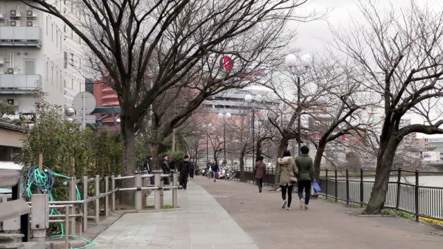 View of park in Fukuoka, Japan video