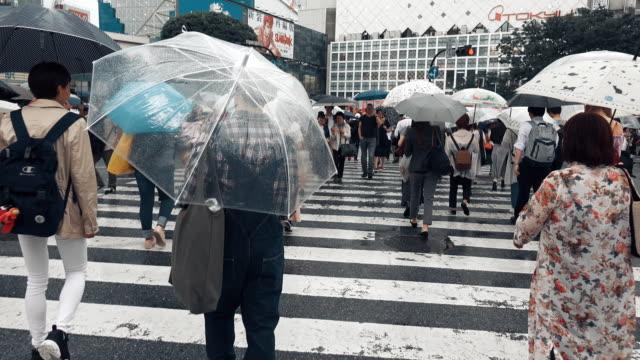 vídeos de stock e filmes b-roll de pov view of shibuya crossing tokyo japan - guarda chuva