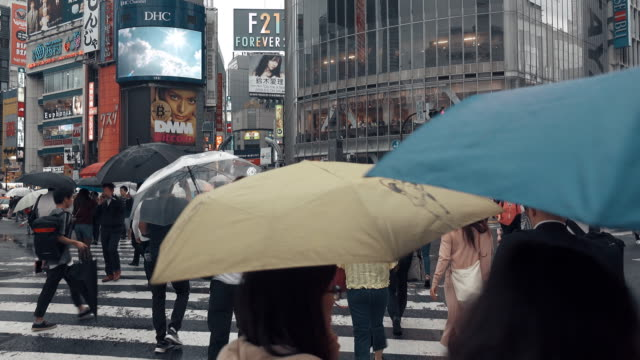 pov-ansicht von shibuya crossing tokyo japan - überweg warnschild stock-videos und b-roll-filmmaterial