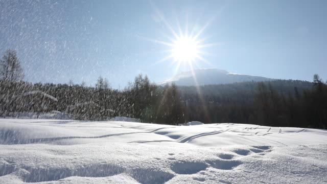 vista delle montagne innevate e dei fiocchi di neve che cadono - lombardia video stock e b–roll