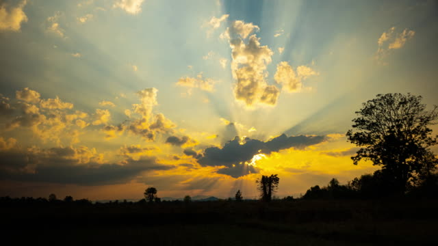 vy över solnedgången med molnens rörelse vid risfältet - abstract silhouette art bildbanksvideor och videomaterial från bakom kulisserna