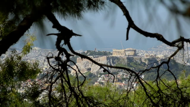 View of the Acropolis through branches of trees video