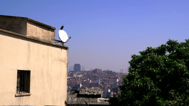 View of the city from the Suleymaniye Mosque, Istanbul, Turkey - video