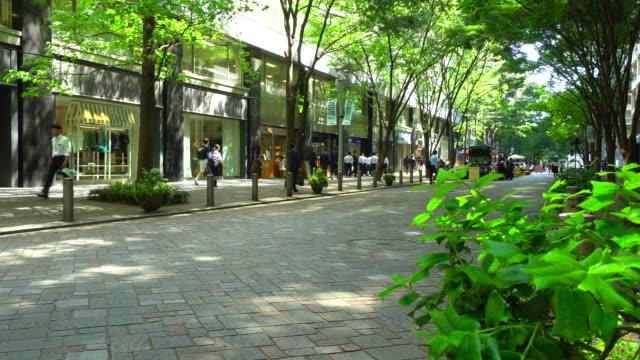 東京・丸の内の新緑中通りの眺め - 緑 ビル点の映像素材/bロール