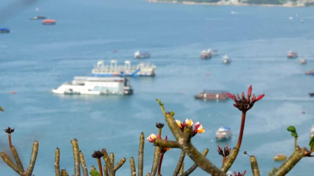 vídeos de stock, filmes e b-roll de pattaya, tailândia - 7 de fevereiro de 2018: vista sobre o mar da china meridional do golfo em pattaya. vários navios estão na baía de mar. - vinho do porto