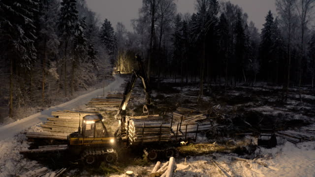 View of the log grappler getting logs on the ground Virumaa Estonia 2019 March 08: View of the log grappler getting logs on the ground to the truck on winter snowy night at the forest construction equipment stock videos & royalty-free footage