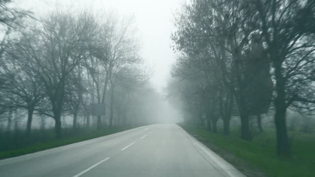 View of the road in early spring. Movement of the car along the highway with thick fog. Fog growing on the asphalt road. Dangerous road for cars with trees on each side