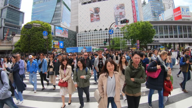 pov view of the shibuya crossing intersection - segnale per macchine e pedoni video stock e b–roll