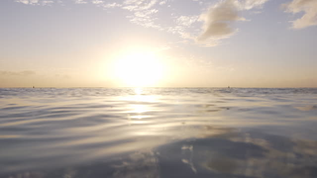 View of the sunset while relaxing in the ocean video