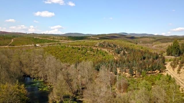 vídeos de stock e filmes b-roll de view of vouga river, with forest and windmills as background - vídeos de barragem portugal