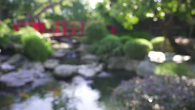 View of waterfall with little pond and red bridge in Japanese garden.