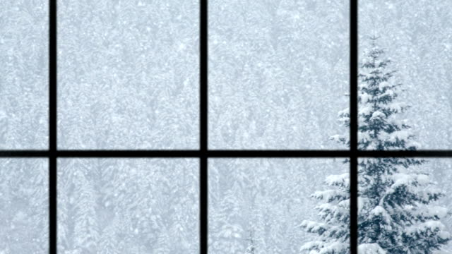 View of winter through window, loopable video