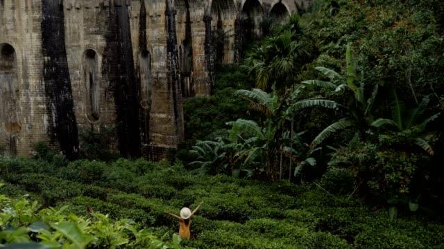 stockvideo's en b-roll-footage met mening van jonge vrouw onder oude treinbrug bij zonsondergang in sri lanka nadenkend het mooie landschap van de heuvel en theeplantage. het reisavontuur van mensen in het concept van azië - camelia white