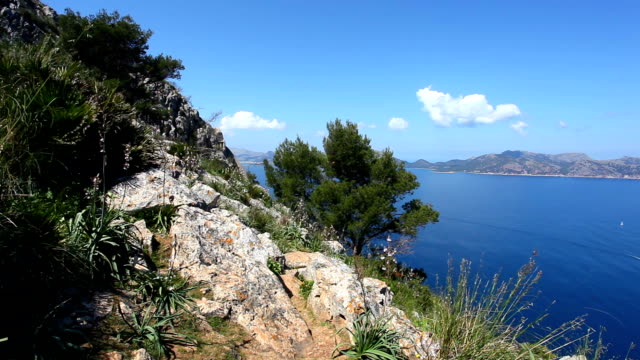 View to Pollenca Port in Majorca video