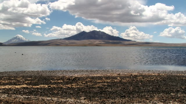 View to the Chungara lake with volcanic mountain range at the background in Lauca National Park. video