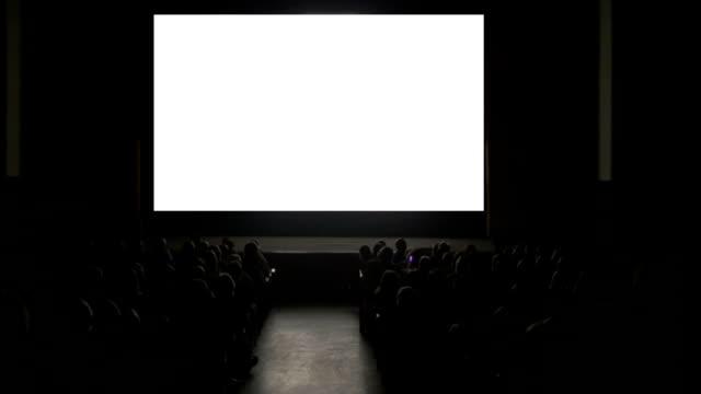viewer in dark cinema hall mit leeren bildschirm - zuschauerraum stock-videos und b-roll-filmmaterial
