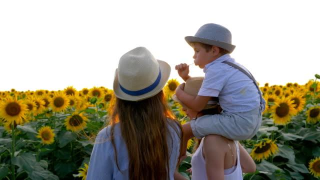 村, 歡快的孩子們吃甜糖果在美麗的黃色田野漫步在陽光明媚的向日葵 - 波板糖 個影片檔及 b 捲影像