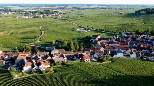village in burgundy, france - francja filmów i materiałów b-roll