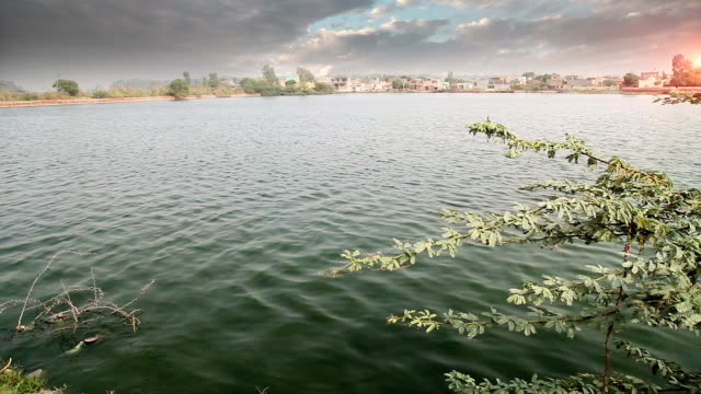 village near pond - haryana video stock e b–roll