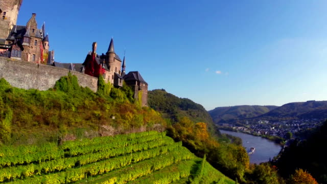 Vine hills front old Castle aerial shot, ship river background. Beautiful aerial shot above Europe, culture and landscapes, camera pan dolly in the air. Drone flying above European land. Traveling sightseeing, tourist views of Germany. video