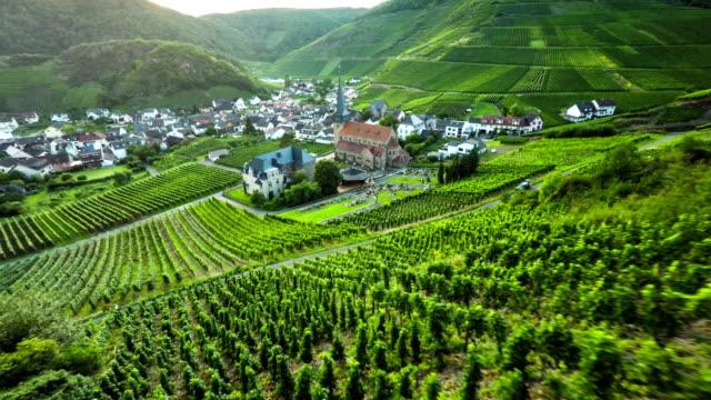 Vineyard and idyllic Village video