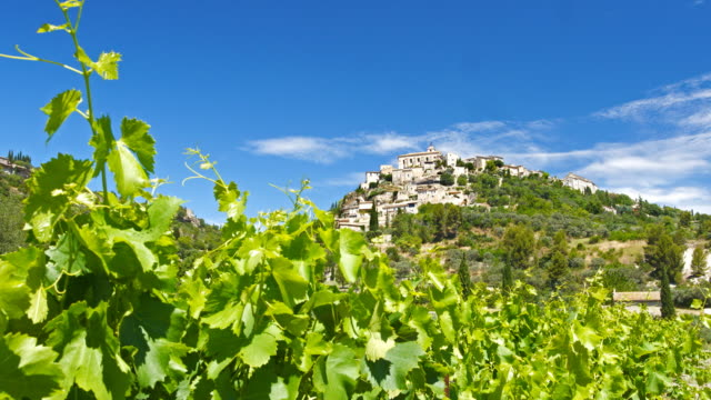 Vineyard in front of a town on a hill Vineyard in front of a town on a hill. provence alpes cote d'azur stock videos & royalty-free footage
