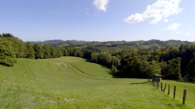vineyards in southern styria, austria - styria filmów i materiałów b-roll