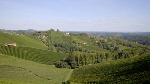 güney styria, avusturya'daki üzüm bağları - styria stok videoları ve detay görüntü çekimi