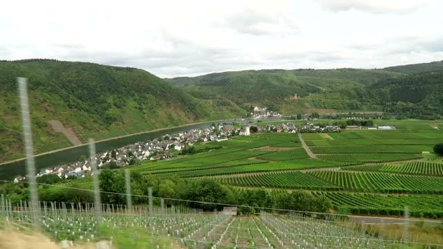 vineyards of Moselle river. In background village Beilstein in Rhineland-Palatinate. (Germany) video